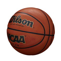 Wilson ICON AllSurface In/Outdoor Basketball str.7